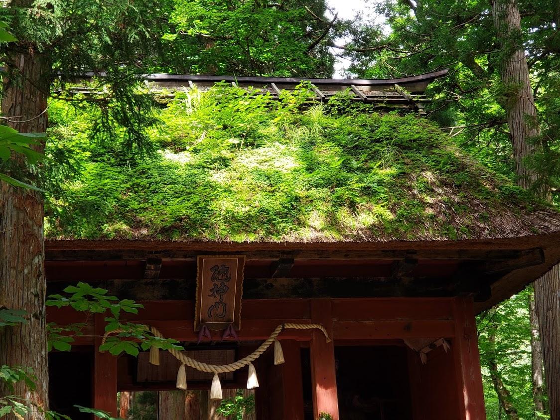 静岡のメディカルハーブ教室,ハーバルサロンアンジュ,メディカルハーブ,ハーブ,ハーブのある暮らし